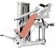 Фото Gym80 Dual Incline Bench Press (3042)